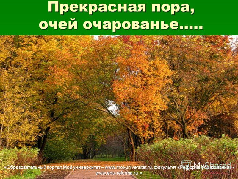 Университет – www moi universitet ru факультет