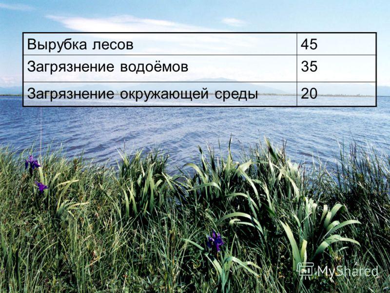 Вырубка лесов45 Загрязнение водоёмов35 Загрязнение окружающей среды20