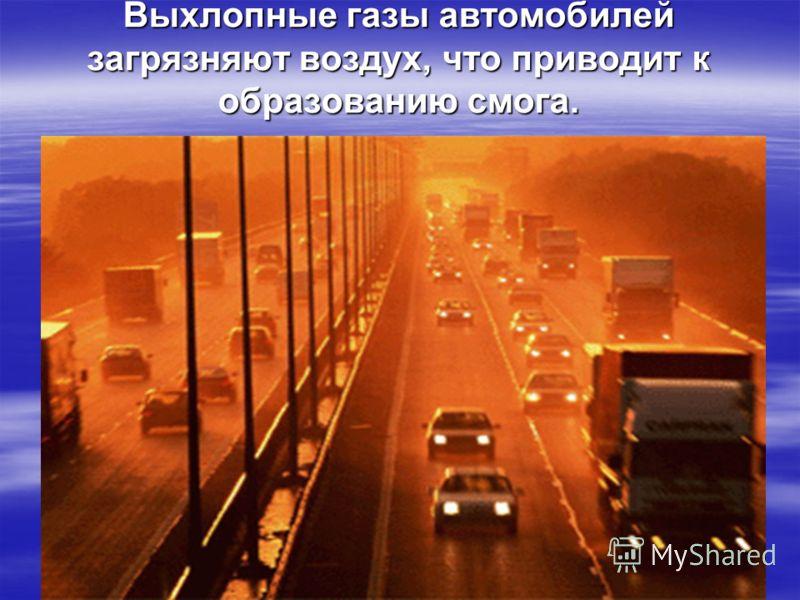 Выхлопные газы автомобилей загрязняют воздух, что приводит к образованию смога.