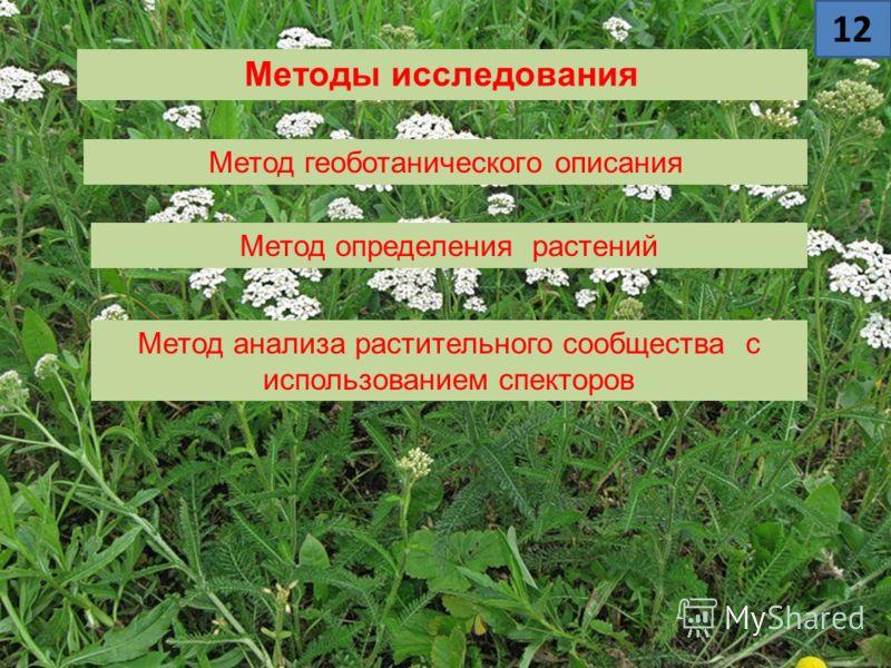 Методы исследования Метод геоботанического описания Метод определения растений Метод анализа растительного сообщества с использованием спекторов 12