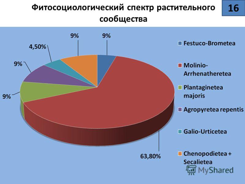 Фитосоциологический спектр растительного сообщества 16