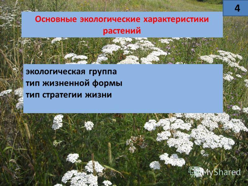 Основные экологические характеристики растений экологическая группа тип жизненной формы тип стратегии жизни 44