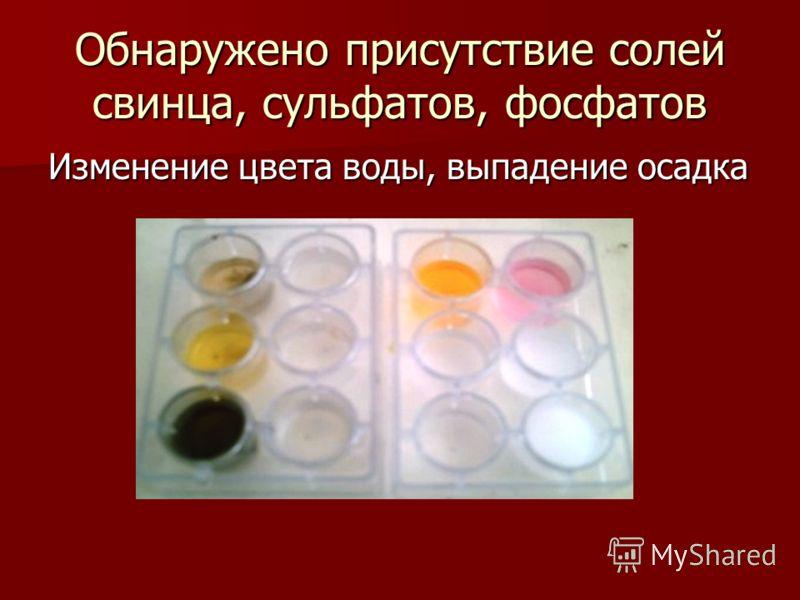Обнаружено присутствие солей свинца, сульфатов, фосфатов Изменение цвета воды, выпадение осадка