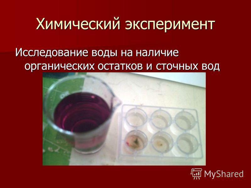 Химический эксперимент Исследование воды на наличие органических остатков и сточных вод