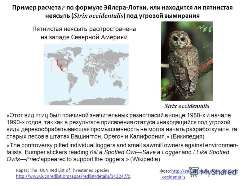 Пример расчета r по формуле Эйлера-Лотки, или находится ли пятнистая неясыть ( Strix occidentalis ) под угрозой вымирания Фото:http://en.wikipedia.org/wiki/Strix _occidentalishttp://en.wikipedia.org/wiki/Strix _occidentalis Пятнистая неясыть распрост