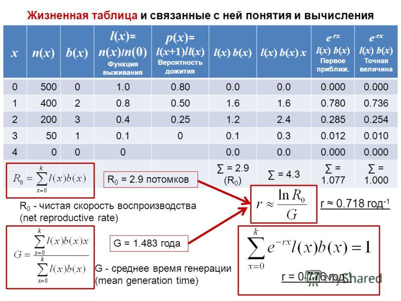 Жизненная таблица и связанные с ней понятия и вычисления xn(x)n(x)b(x)b(x) l(x) = n(x) / n(0) Функция выживания p(x) = l(x+1) / l(x) Вероятность дожития l(x) b(x)l(x) b(x)l(x) b(x) xl(x) b(x) x e - rx l(x) b(x) Первое приближ. e - rx l(x) b(x) Точная