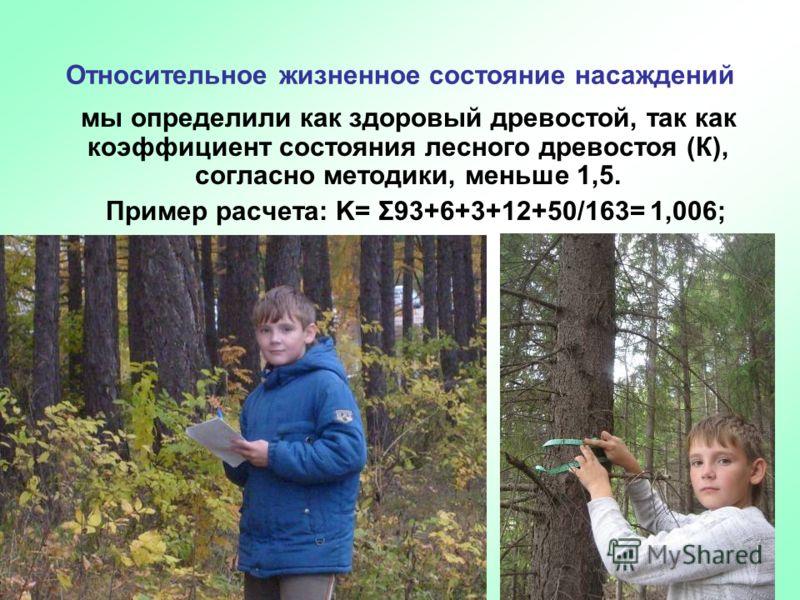 Относительное жизненное состояние насаждений мы определили как здоровый древостой, так как коэффициент состояния лесного древостоя (К), согласно методики, меньше 1,5. Пример расчета: K= Σ93+6+3+12+50/163= 1,006;