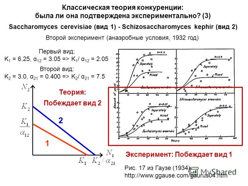 Классическая теория конкуренции: была ли она подтверждена экспериментально? (3) Saccharomyces cerevisiae (вид 1) - Schizosaccharomyces kephir (вид 2) Второй эксперимент (анаэробные условия, 1932 год) Первый вид: K 1 = 6.25, α 12 = 3.05 => K 1 / α 12