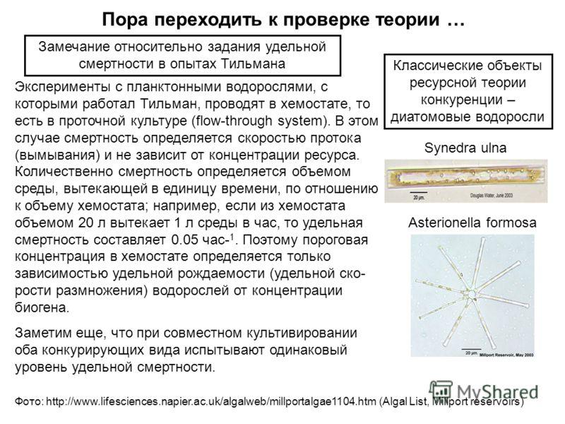 Эксперименты с планктонными водорослями, с которыми работал Тильман, проводят в хемостате, то есть в проточной культуре (flow-through system). В этом случае смертность определяется скоростью протока (вымывания) и не зависит от концентрации ресурса. К