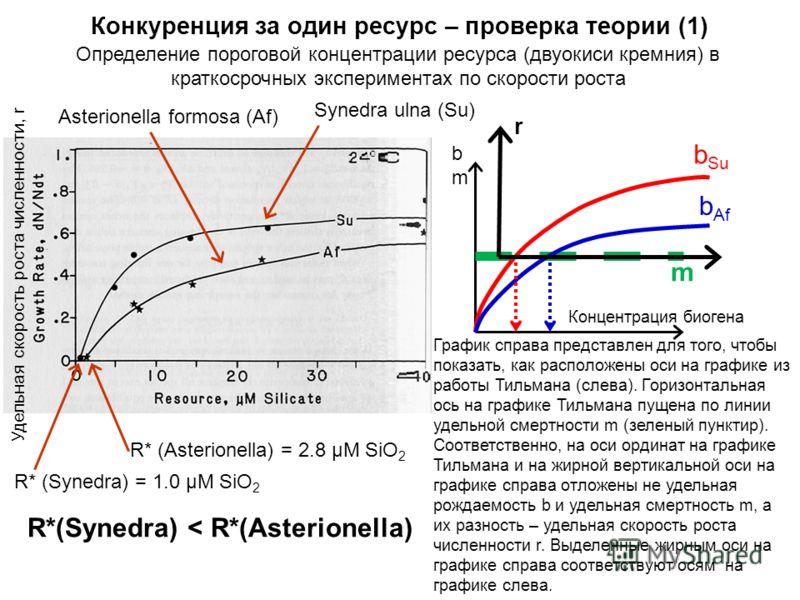 Определение пороговой концентрации ресурса (двуокиси кремния) в краткосрочных экспериментах по скорости роста Конкуренция за один ресурс – проверка теории (1) R* (Synedra) = 1.0 μM SiO 2 R* (Asterionella) = 2.8 μM SiO 2 R*(Synedra) < R*(Asterionella)