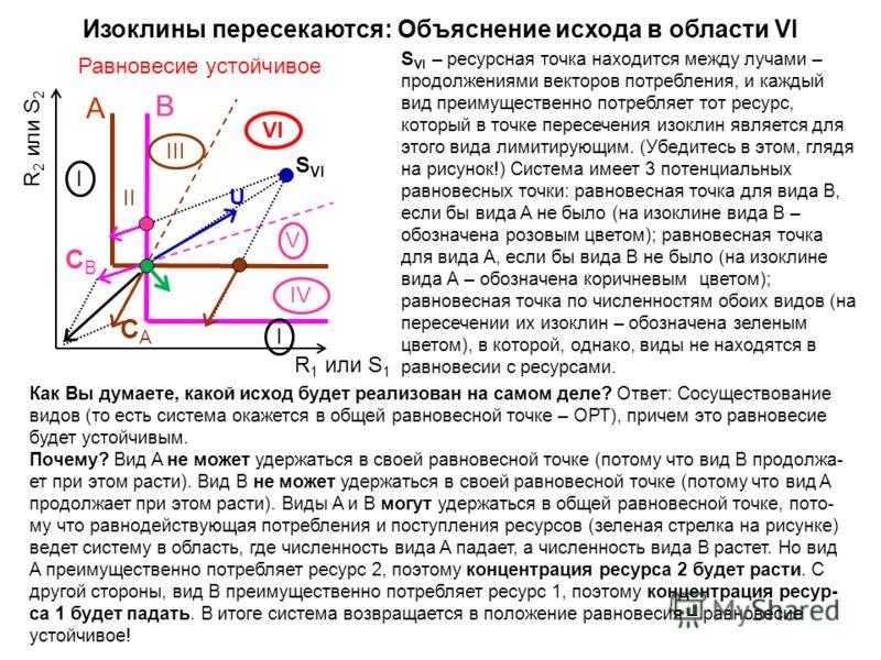 R 2 или S 2 A B CACA CBCB S VI I III IV V VI I II R 1 или S 1 S VI – ресурсная точка находится между лучами – продолжениями векторов потребления, и каждый вид преимущественно потребляет тот ресурс, который в точке пересечения изоклин является для это