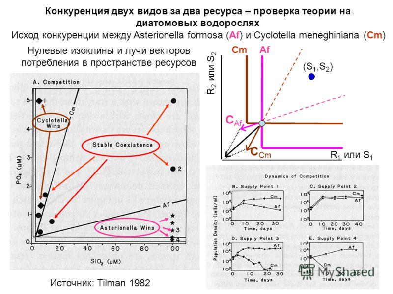 Конкуренция двух видов за два ресурса – проверка теории на диатомовых водорослях Исход конкуренции между Asterionella formosa (Af) и Cyclotella meneghiniana (Cm) Нулевые изоклины и лучи векторов потребления в пространстве ресурсов R 1 или S 1 R 2 или