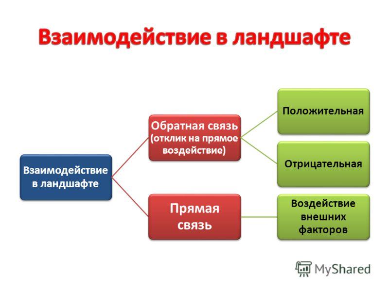 Взаимодействие в ландшафте Обратная связь (отклик на прямое воздействие) ПоложительнаяОтрицательная Прямая связь Воздействие внешних факторов