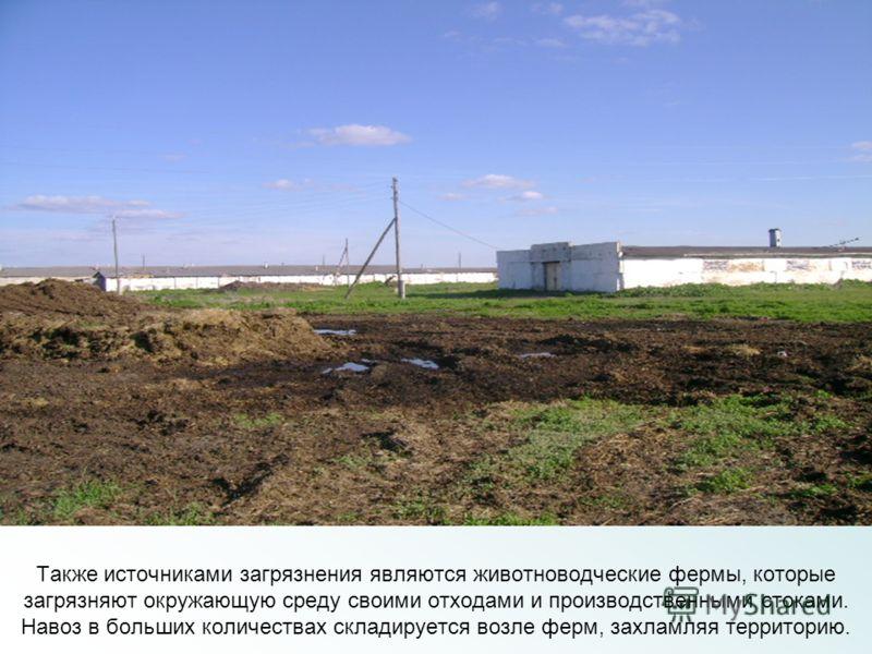 Также источниками загрязнения являются животноводческие фермы, которые загрязняют окружающую среду своими отходами и производственными стоками. Навоз в больших количествах складируется возле ферм, захламляя территорию.