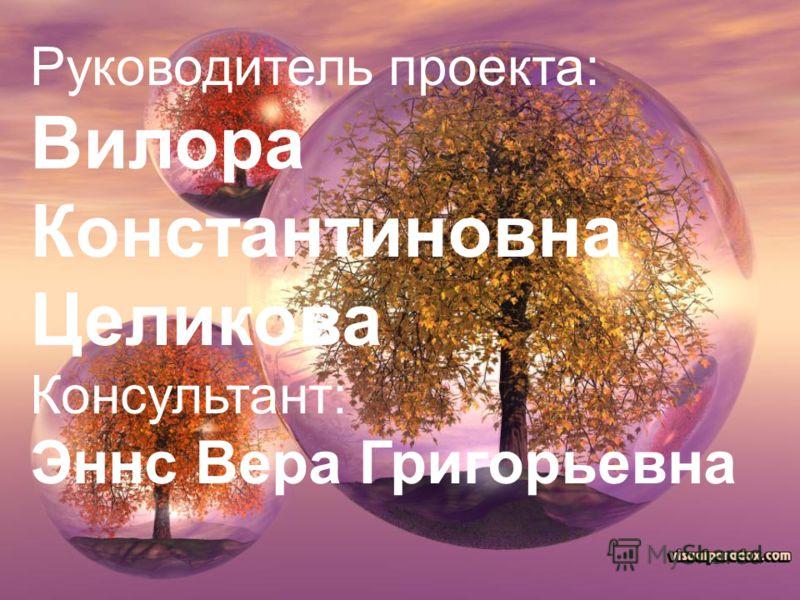Руководитель проекта: Вилора Константиновна Целикова Консультант: Эннс Вера Григорьевна