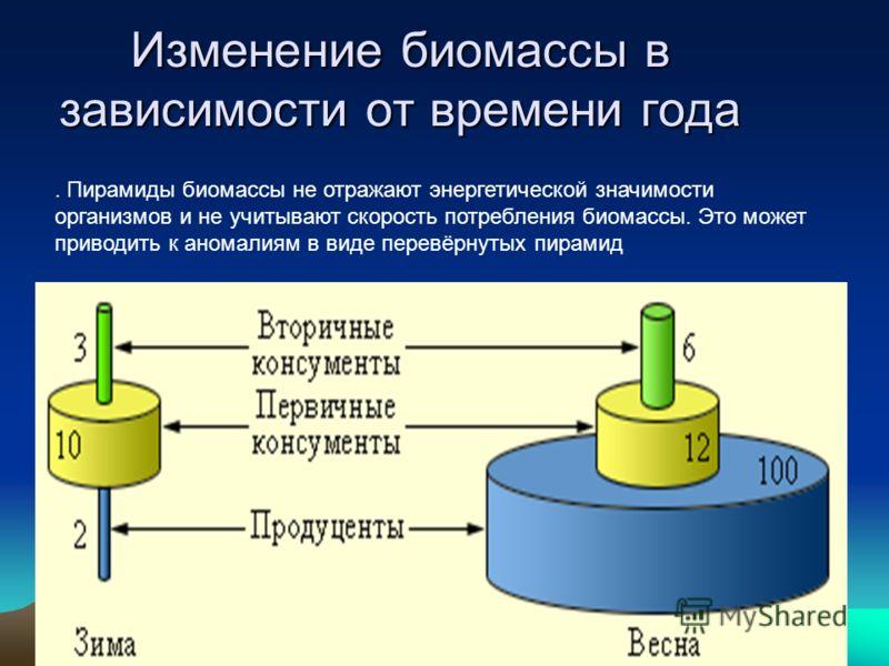 Изменение биомассы в зависимости от времени года. Пирамиды биомассы не отражают энергетической значимости организмов и не учитывают скорость потребления биомассы. Это может приводить к аномалиям в виде перевёрнутых пирамид