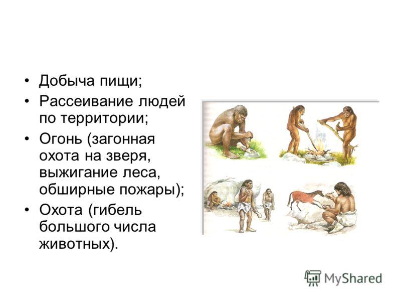 Добыча пищи; Рассеивание людей по территории; Огонь (загонная охота на зверя, выжигание леса, обширные пожары); Охота (гибель большого числа животных).