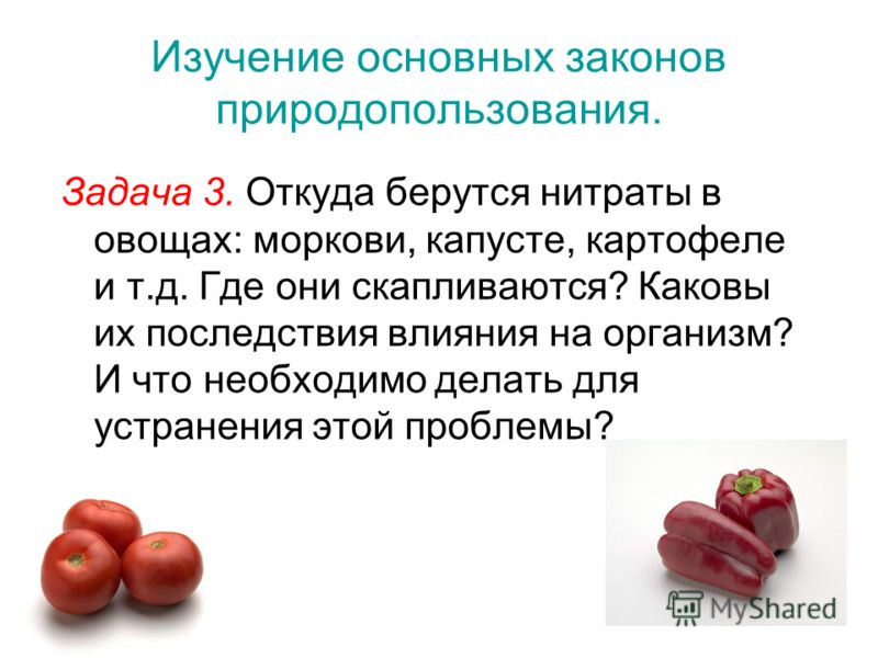 Изучение основных законов природопользования. Задача 3. Откуда берутся нитраты в овощах: моркови, капусте, картофеле и т.д. Где они скапливаются? Каковы их последствия влияния на организм? И что необходимо делать для устранения этой проблемы?