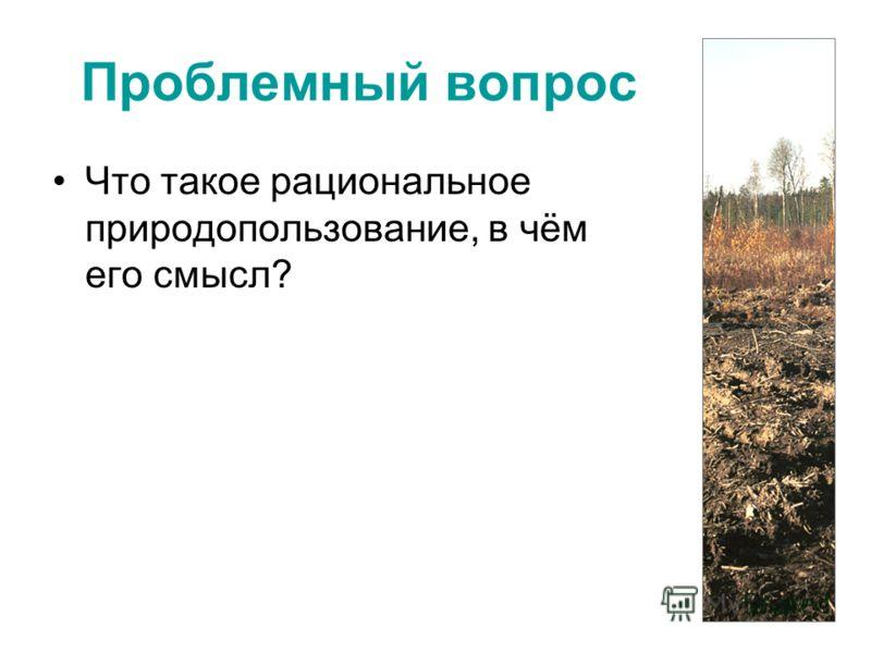 Проблемный вопрос Что такое рациональное природопользование, в чём его смысл?