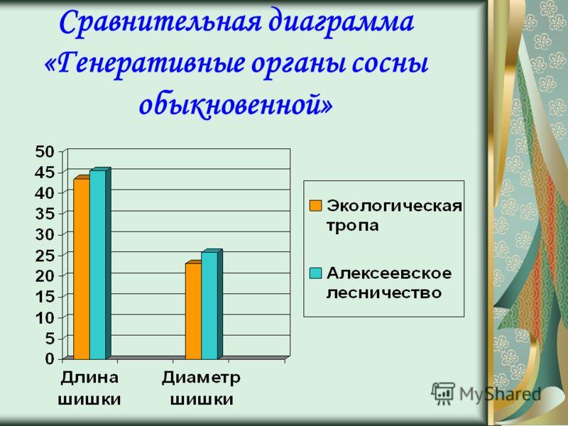 Сравнительная диаграмма «Генеративные органы сосны обыкновенной»