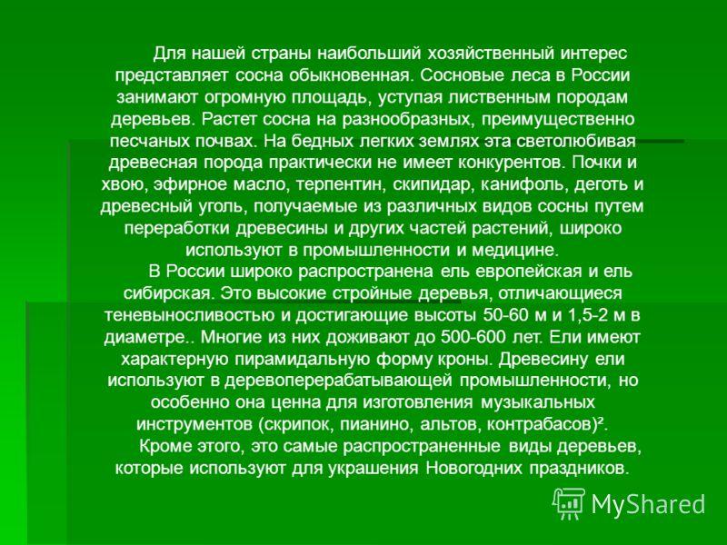 Для нашей страны наибольший хозяйственный интерес представляет сосна обыкновенная. Сосновые леса в России занимают огромную площадь, уступая лиственным породам деревьев. Растет сосна на разнообразных, преимущественно песчаных почвах. На бедных легких