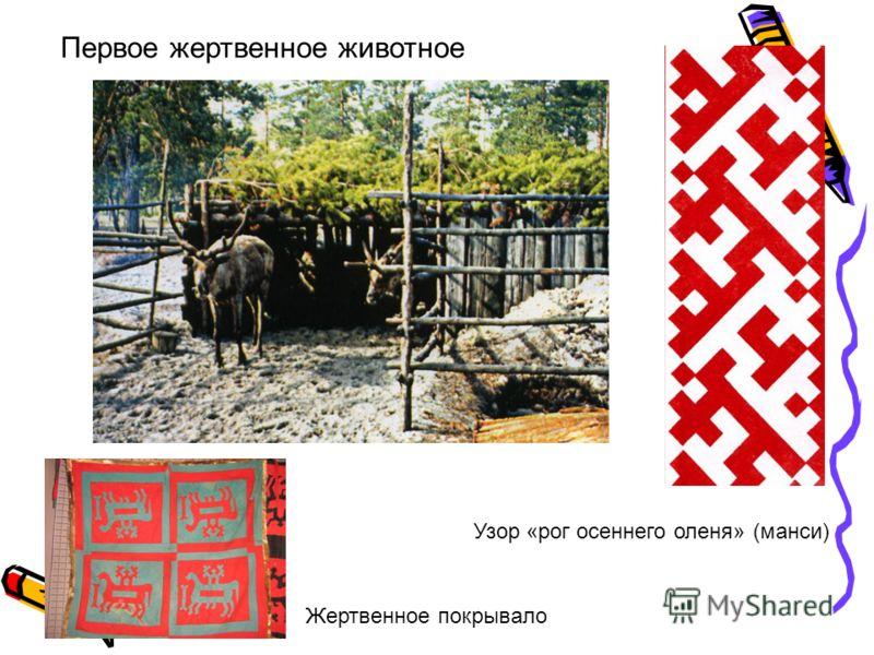 Узор «рог осеннего оленя» (манси) Первое жертвенное животное Жертвенное покрывало