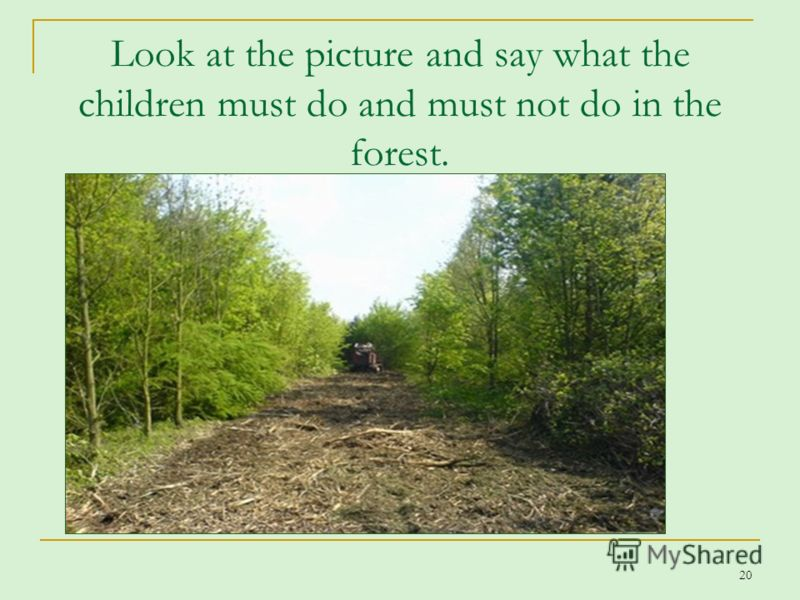 20 Look at the picture and say what the children must do and must not do in the forest.