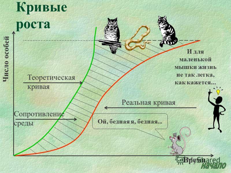 Кривые роста Реальная кривая Теоретическая кривая Сопротивление среды Время Число особей Ой, бедная я, бедная... И для маленькой мышки жизнь не так легка, как кажется...