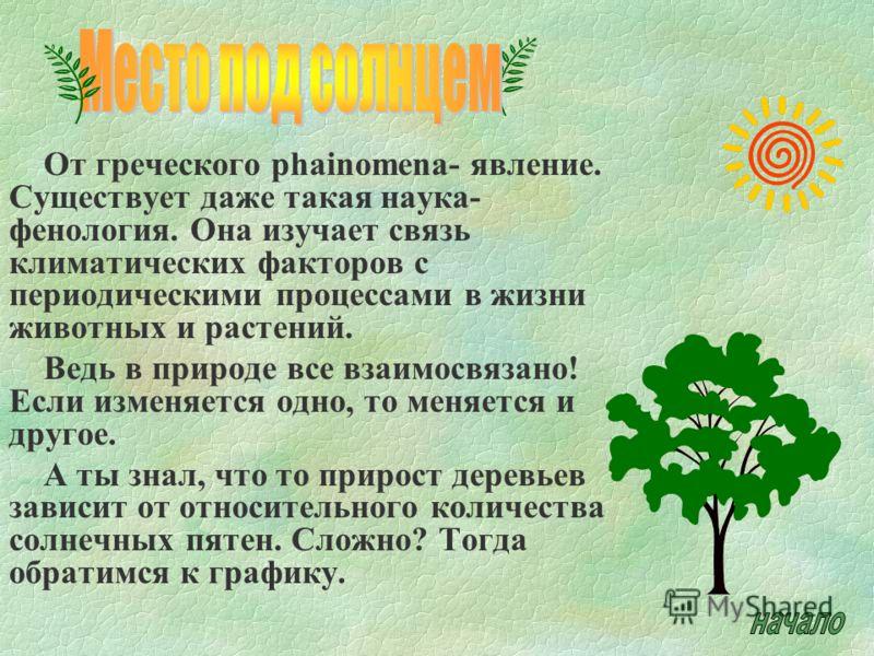 От греческого phainomena- явление. Существует даже такая наука- фенология. Она изучает связь климатических факторов с периодическими процессами в жизни животных и растений. Ведь в природе все взаимосвязано! Если изменяется одно, то меняется и другое.