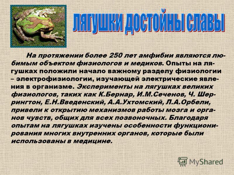 На протяжении более 250 лет амфибии являются лю- бимым объектом физиологов и медиков. Опыты на ля- гушках положили начало важному разделу физиологии – электрофизиологии, изучающей электрические явле- ния в организме. Эксперименты на лягушках великих