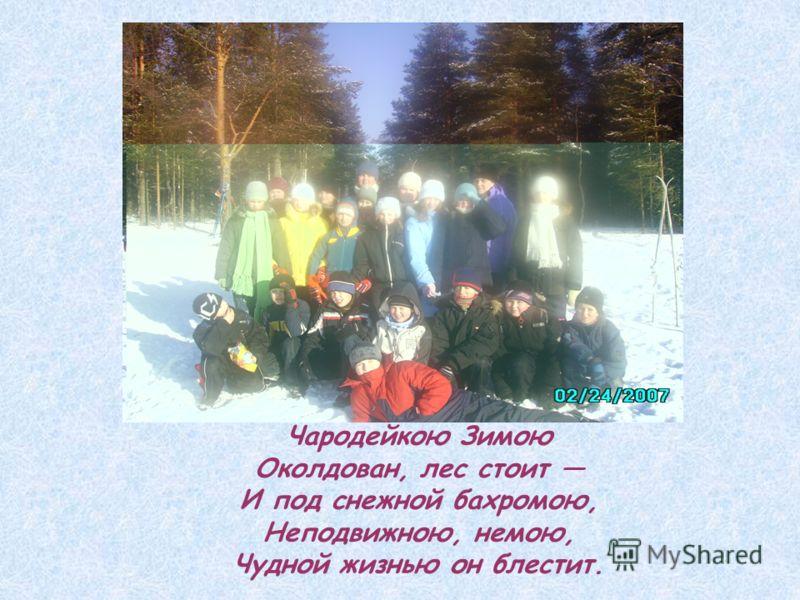 Чародейкою Зимою Околдован, лес стоит И под снежной бахромою, Неподвижною, немою, Чудной жизнью он блестит.