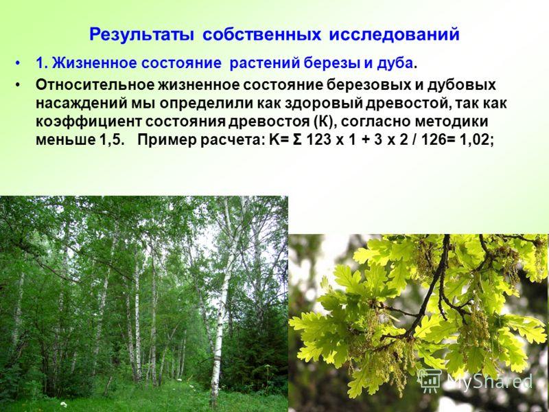 Результаты собственных исследований 1. Жизненное состояние растений березы и дуба. Относительное жизненное состояние березовых и дубовых насаждений мы определили как здоровый древостой, так как коэффициент состояния древостоя (К), согласно методики м