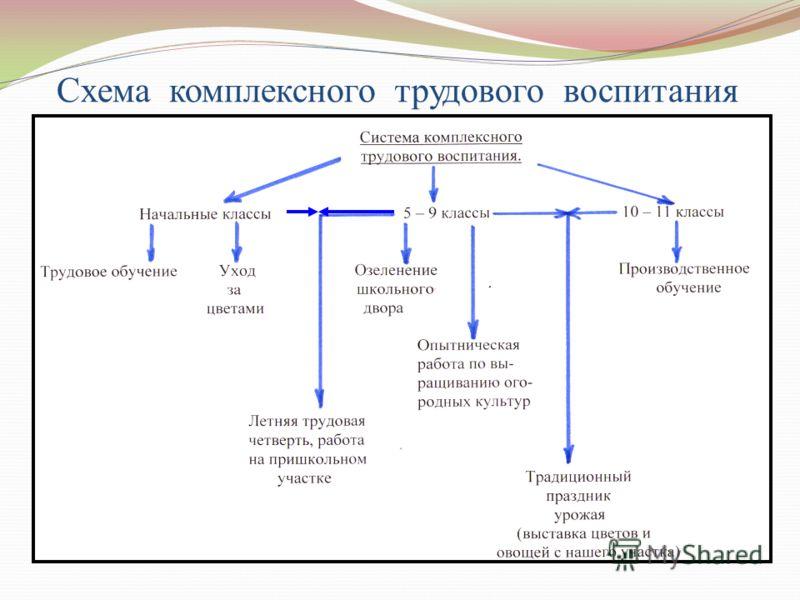 Схема комплексного трудового воспитания