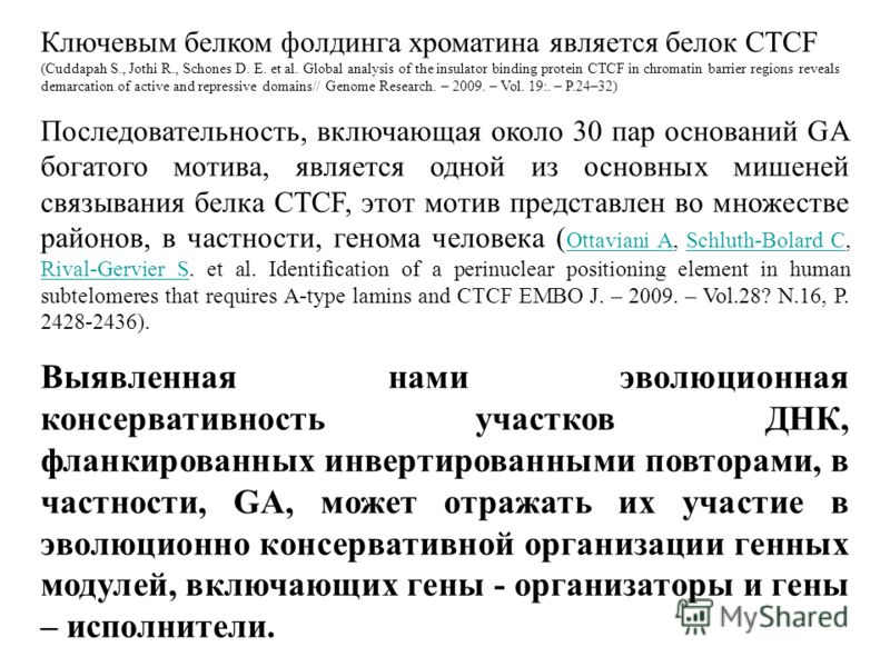 Ключевым белком фолдинга хроматина является белок CTCF (Cuddapah S., Jothi R., Schones D. E. et al. Global analysis of the insulator binding protein CTCF in chromatin barrier regions reveals demarcation of active and repressive domains// Genome Resea