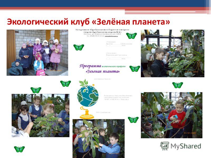 Экологический клуб «Зелёная планета»