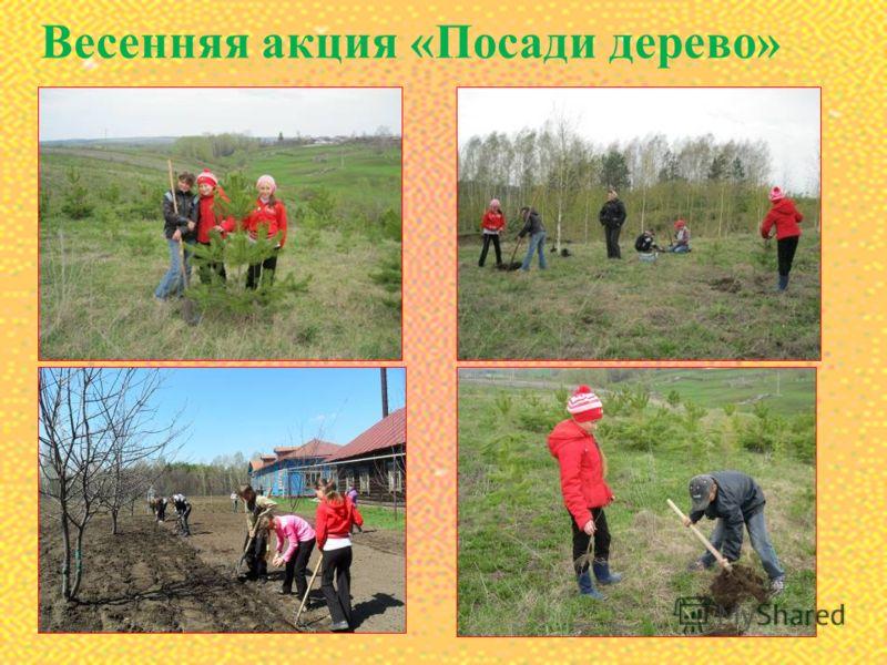 Весенняя акция «Посади дерево»