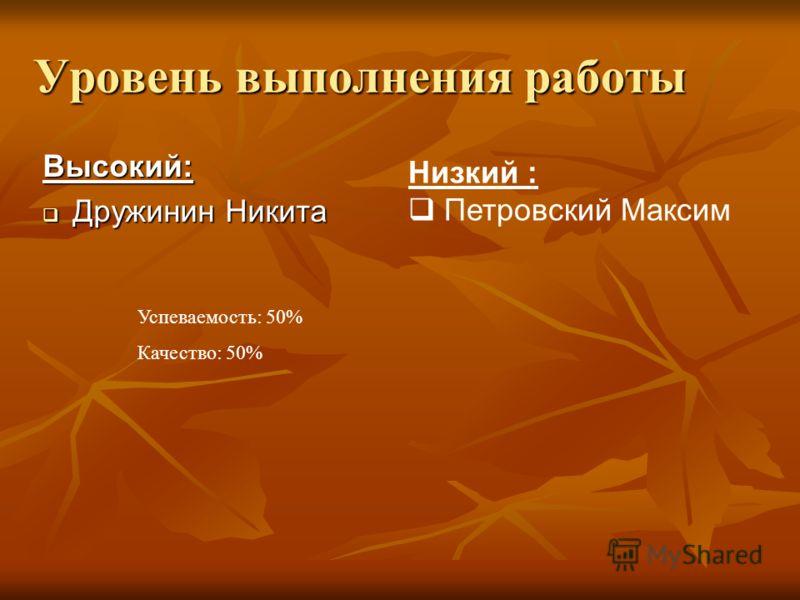 Уровень выполнения работы Высокий: Дружинин Никита Дружинин Никита Низкий : Петровский Максим Успеваемость: 50% Качество: 50%