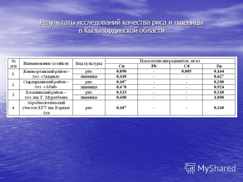 Результаты исследований качества риса и пшеницы в Кызылординской области