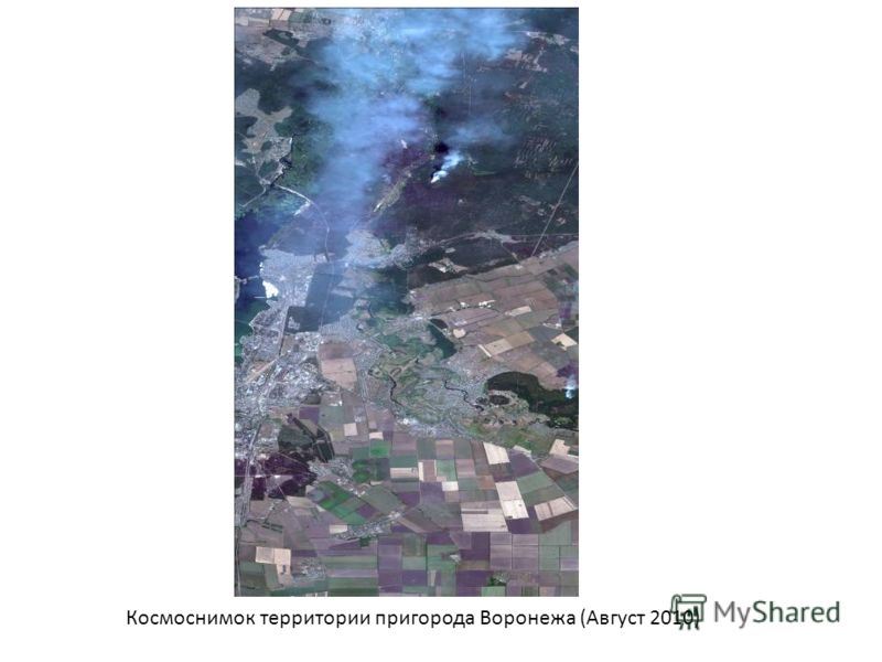 Космоснимок территории пригорода Воронежа (Август 2010)
