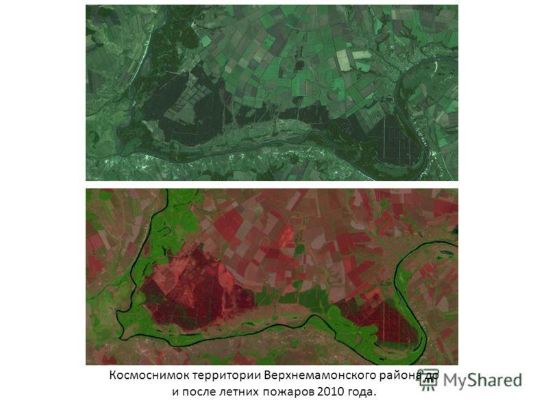 Космоснимок территории Верхнемамонского района до и после летних пожаров 2010 года.