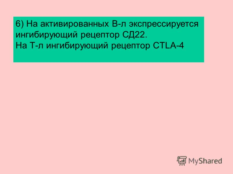 6) На активированных В-л экспрессируется ингибирующий рецептор СД22. На Т-л ингибирующий рецептор CTLA-4