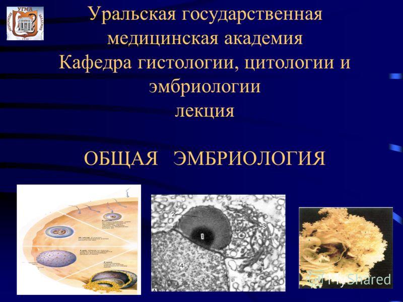 Уральская государственная медицинская академия Кафедра гистологии, цитологии и эмбриологии лекция ОБЩАЯ ЭМБРИОЛОГИЯ