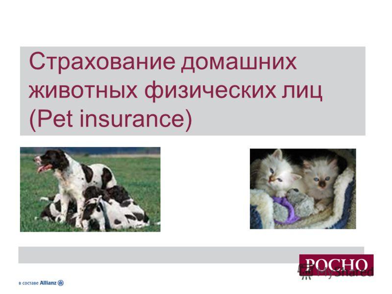 1 Страхование имущества физических лиц Страхование домашних животных физических лиц (Pet insurance)