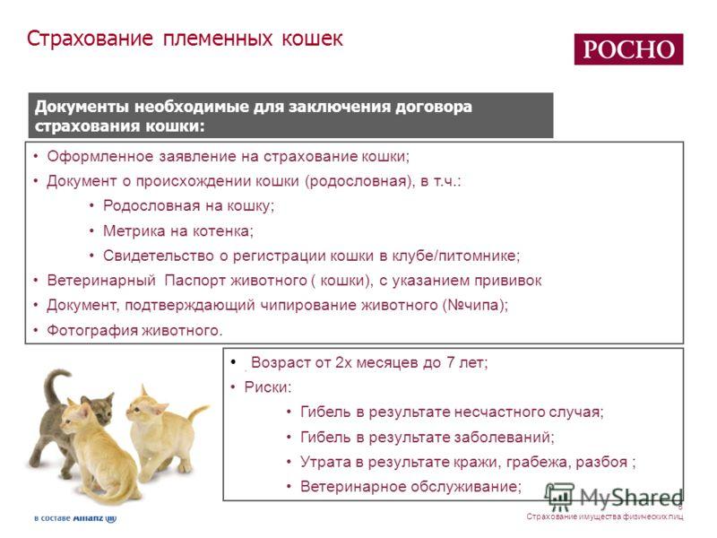 5 Страхование имущества физических лиц Оформленное заявление на страхование кошки; Документ о происхождении кошки (родословная), в т.ч.: Родословная на кошку; Метрика на котенка; Свидетельство о регистрации кошки в клубе/питомнике; Ветеринарный Паспо