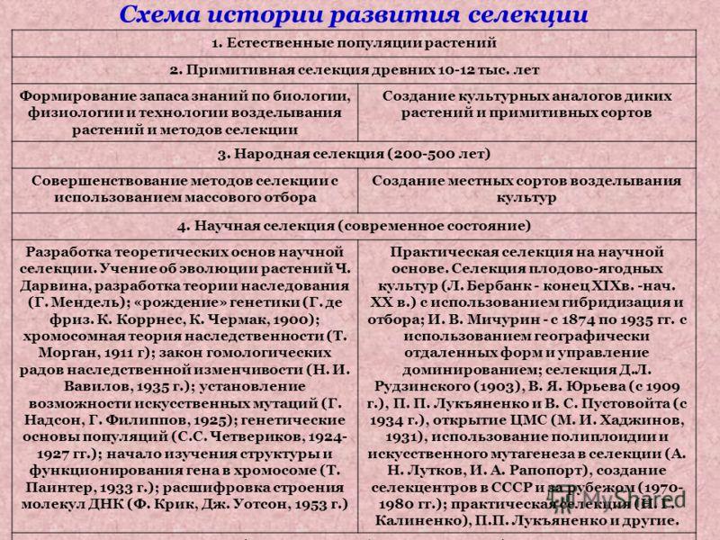 Схема истории развития