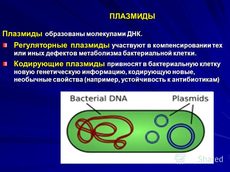 ПЛАЗМИДЫ Плазмиды образованы молекулами ДНК. Регуляторные плазмиды участвуют в компенсировании тех или иных дефектов метаболизма бактериальной клетки. Кодирующие плазмиды привносят в бактериальную клетку новую генетическую информацию, кодирующую новы