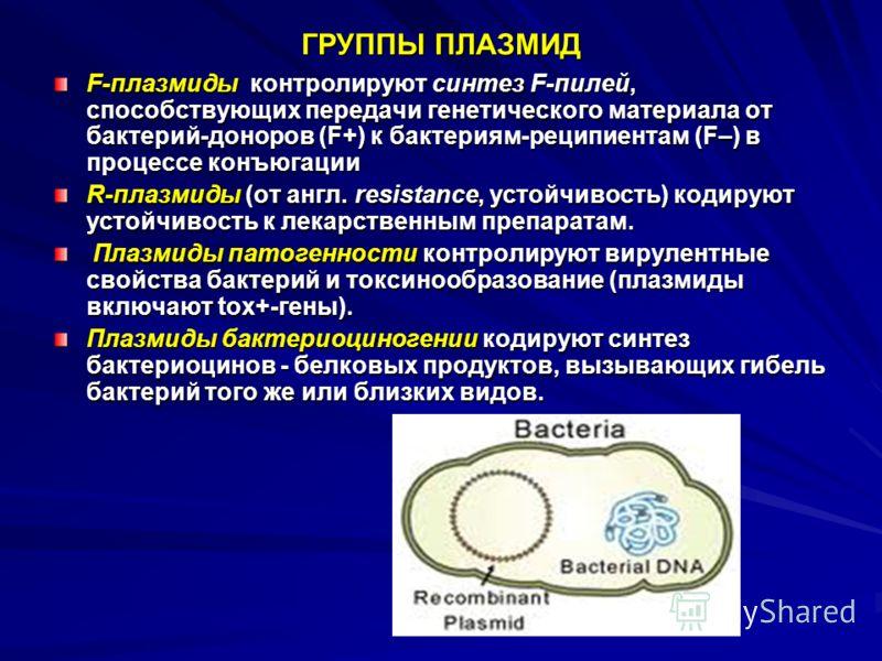 ГРУППЫ ПЛАЗМИД F-плазмиды контролируют синтез F-пилей, способствующих передачи генетического материала от бактерий-доноров (F+) к бактериям-реципиентам (F–) в процессе конъюгации R-плазмиды (от англ. resistance, устойчивость) кодируют устойчивость к