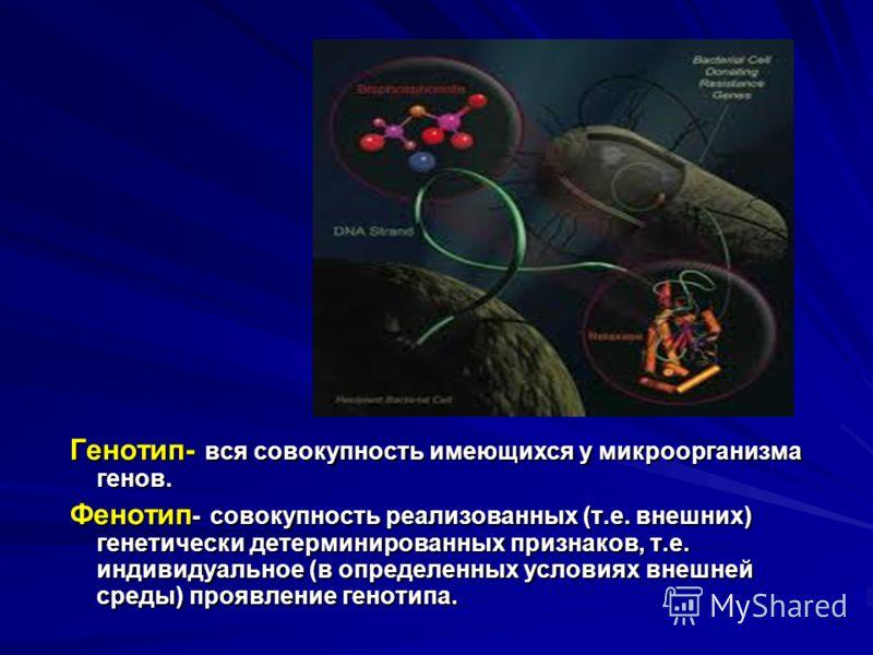 Генотип- вся совокупность имеющихся у микроорганизма генов. Фенотип - совокупность реализованных (т.е. внешних) генетически детерминированных признаков, т.е. индивидуальное (в определенных условиях внешней среды) проявление генотипа.
