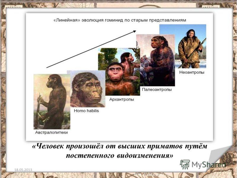 «Человек произошёл от высших приматов путём постепенного видоизменения» 18.05.20135