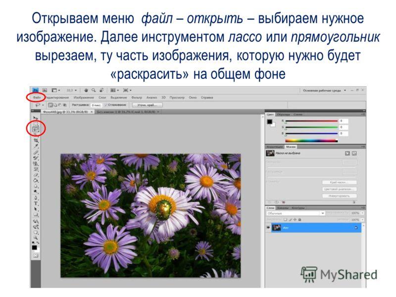 Открываем меню файл – открыть – выбираем нужное изображение. Далее инструментом лассо или прямоугольник вырезаем, ту часть изображения, которую нужно будет «раскрасить» на общем фоне